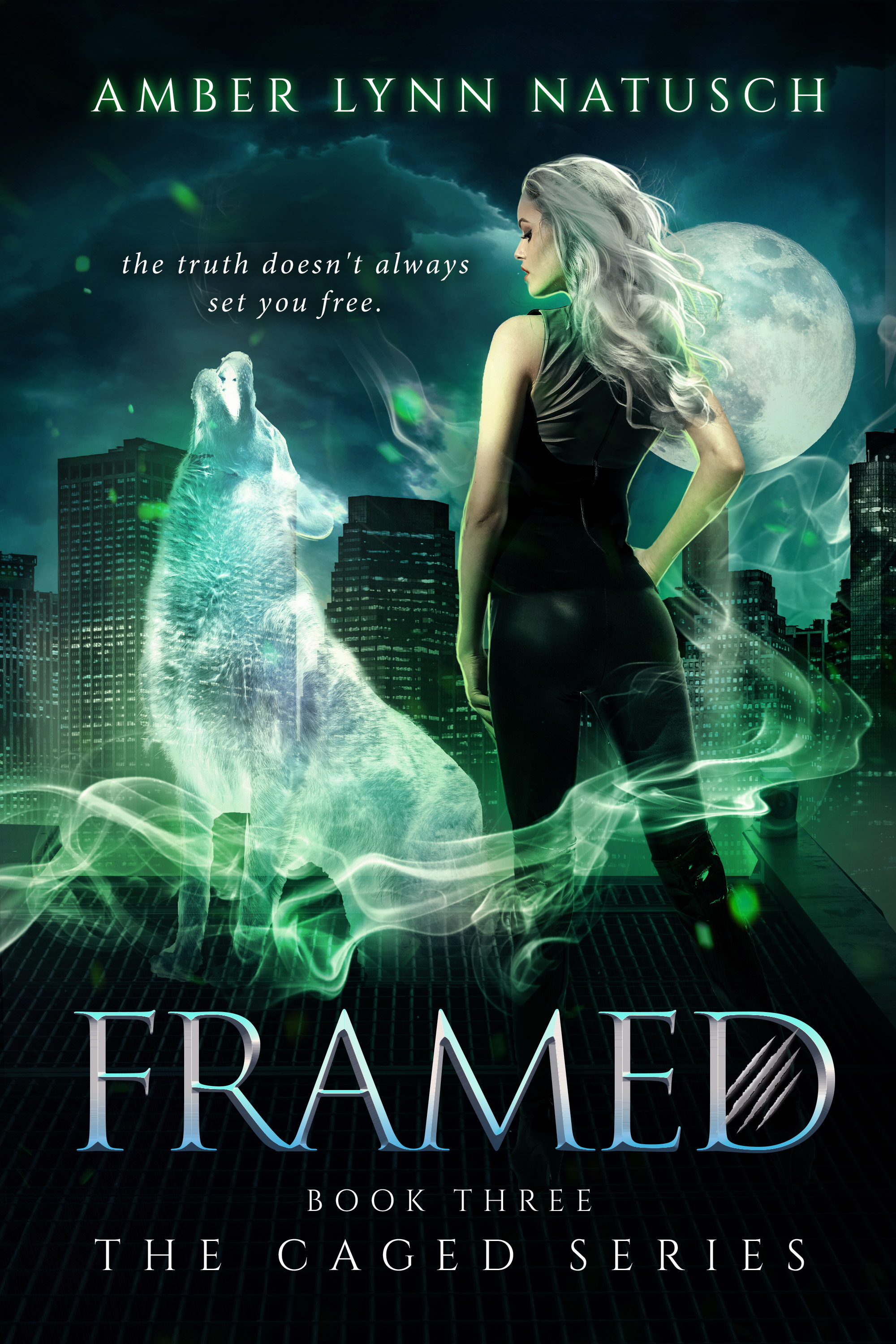 Book Cover: Framed