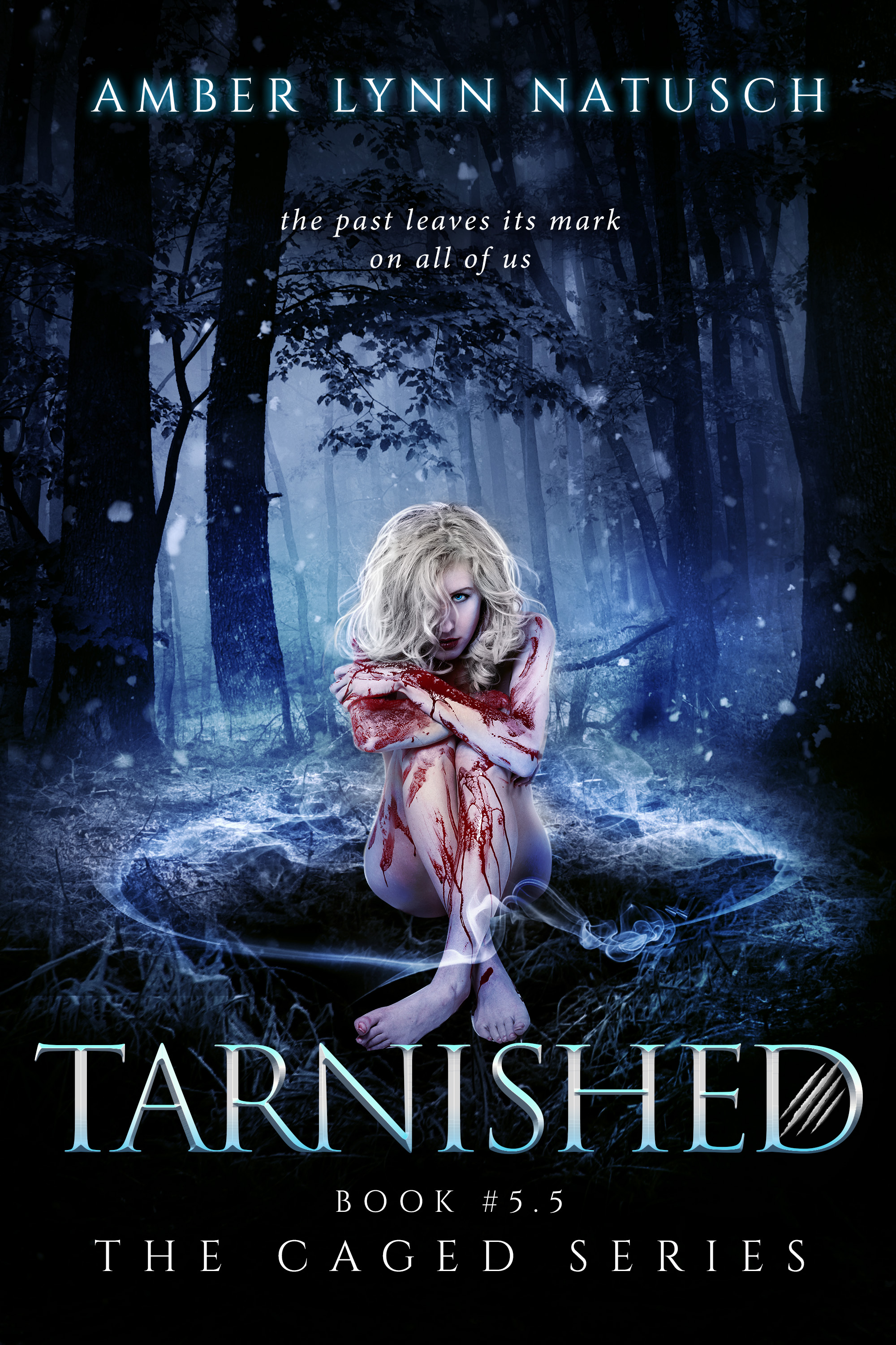 Book Cover: Tarnished