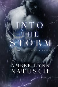 Book Cover: Into the Storm